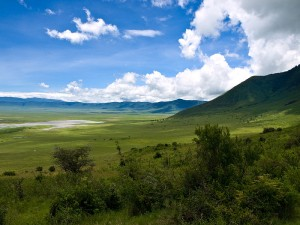By William Warby from London, England (In the Ngorongoro Crater  Uploaded by Petronas) [CC-BY-2.0 (http://creativecommons.org/licenses/by/2.0)], via Wikimedia Commons