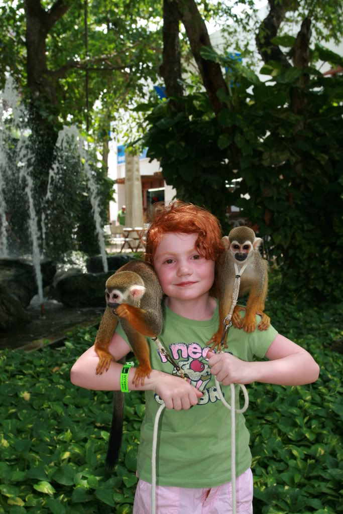 tourist posing with monkeys