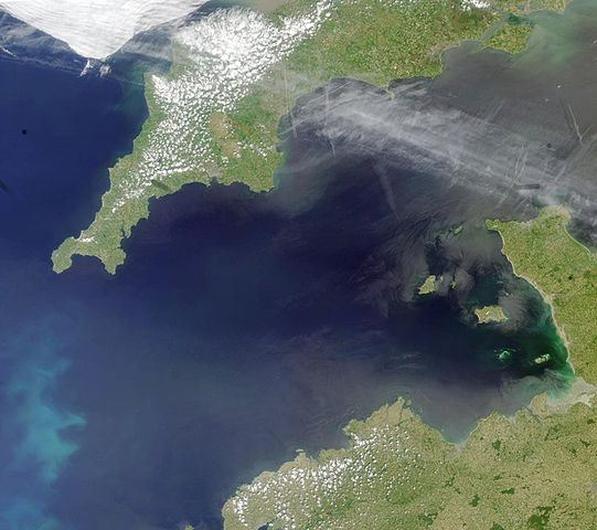 Coccoliths in the Celtic Sea