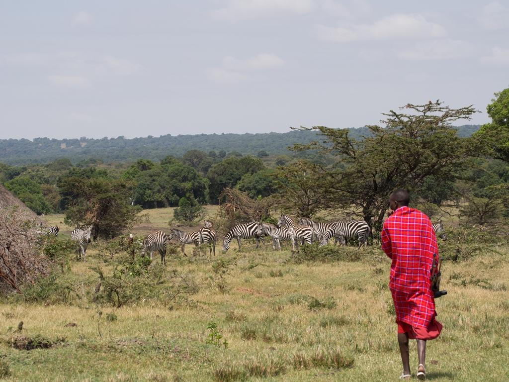 Life Net Masai