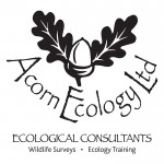 Acorn Ecology
