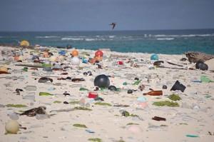 Beach Strewn Plastic Debris