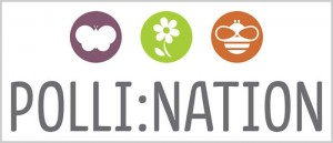 Polli:Nation