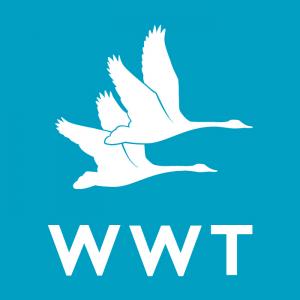WWT – Wildfowl & Wetland Trust