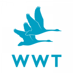Wildfowl & Wetlands Trust - WWT
