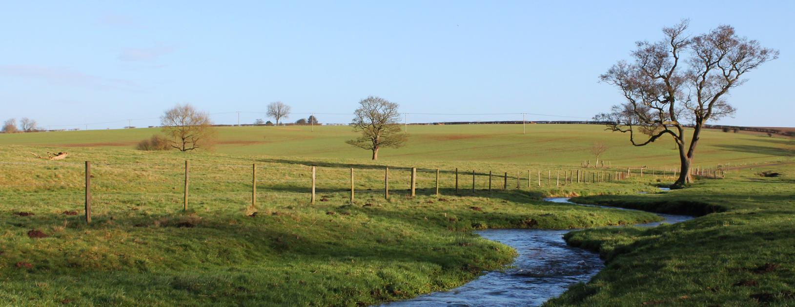 Lincolnshire Chalk Streams Project