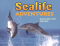Sealife Adventures