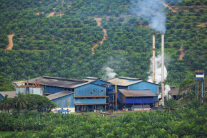 IOI Baturong Palm Oil Mill